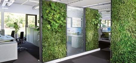 rośliny na ściankach odgradzających pomieszczenia