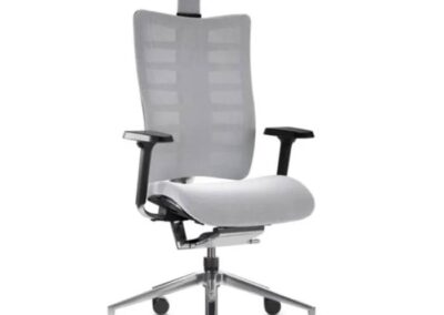 ergonomiczny fotel obrotowy ego