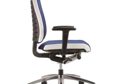 funkcjonalny fotel point