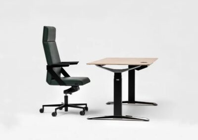 pracownicze biurko move
